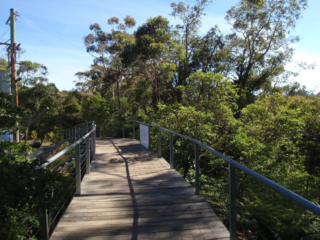 following the wooden footbridge