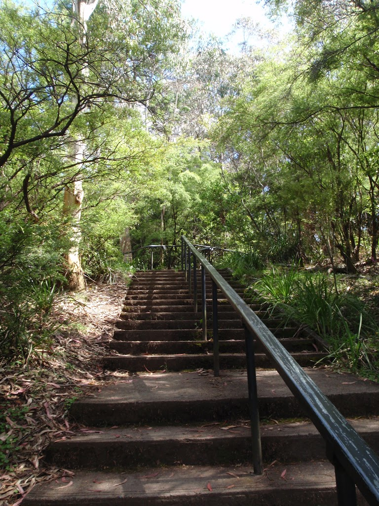 Stairs along Round walk track