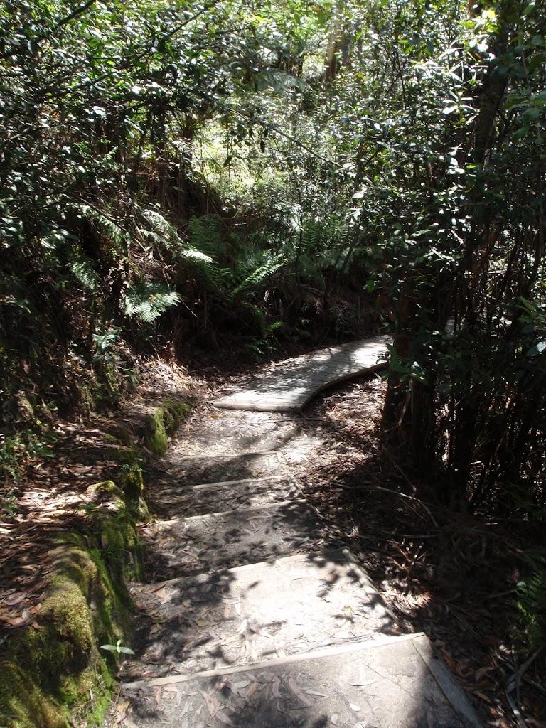 Prince Henry Cliff Walk