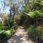 Following the path from Echo Point