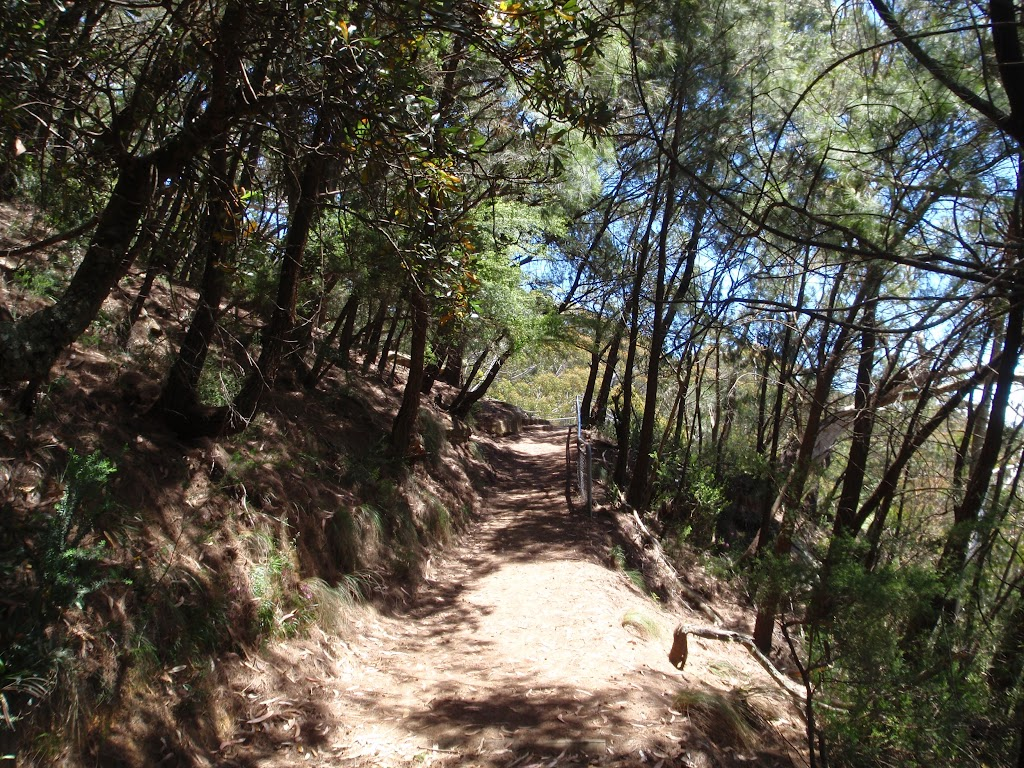 Track between Silver mist park and Tallawarra Lookout