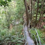 Railed boardwalk along Dardenelles Pass (93079)