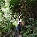 Stair case bellow Lila Falls