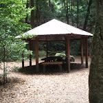 Leura Forest (93178)