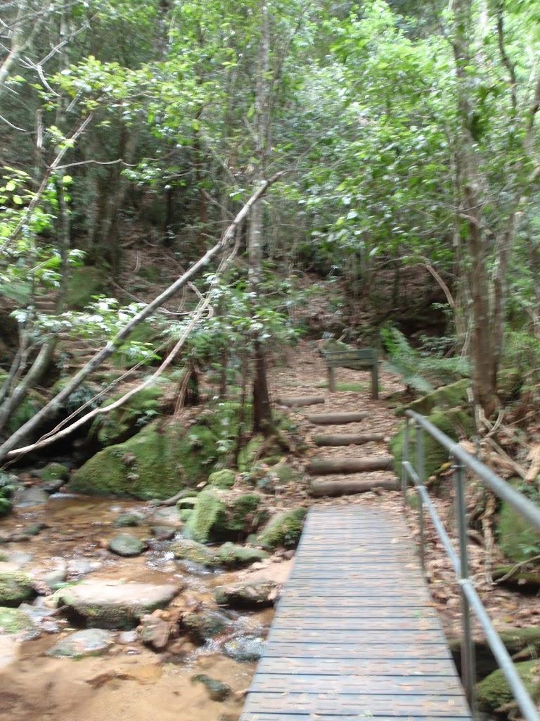 Bridge below Marguerite Cascades
