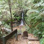 Lila Falls