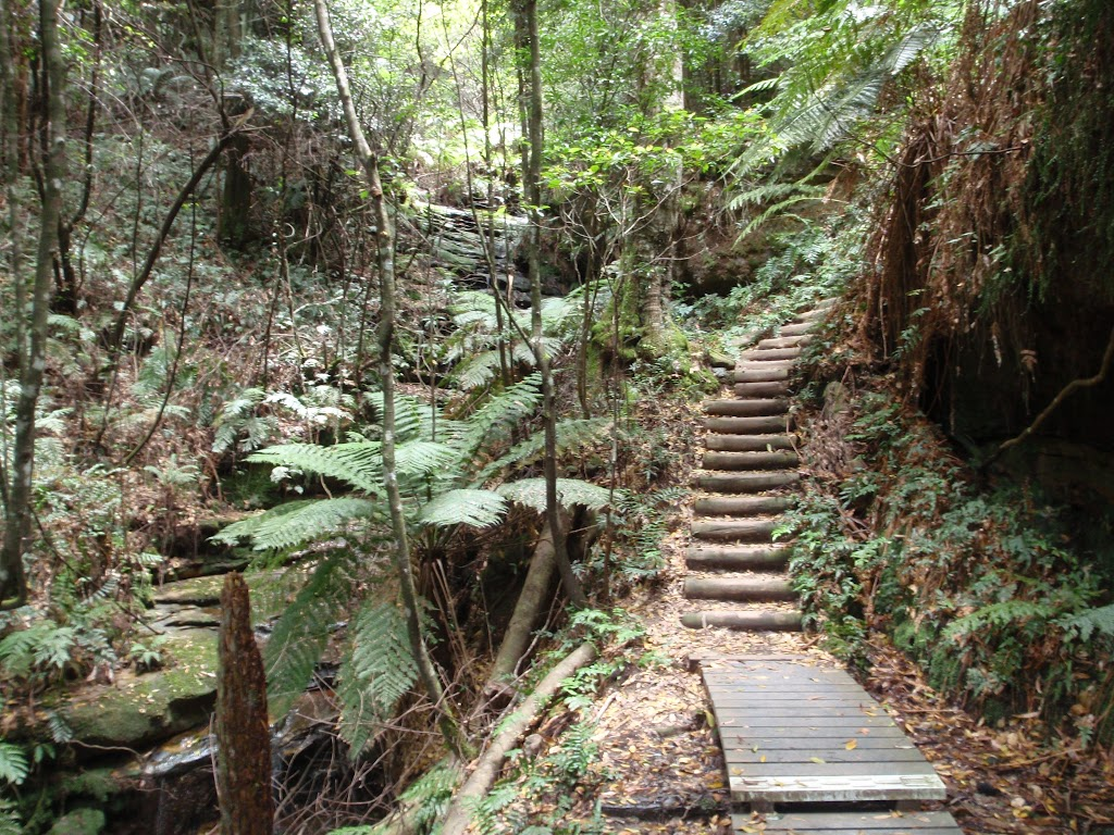 Stairs down from Fern Bower
