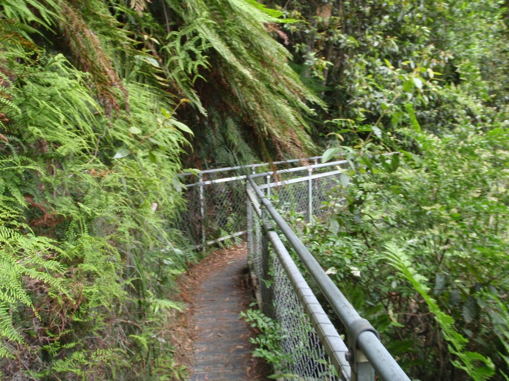 Short walkways in Blue Mountains NP