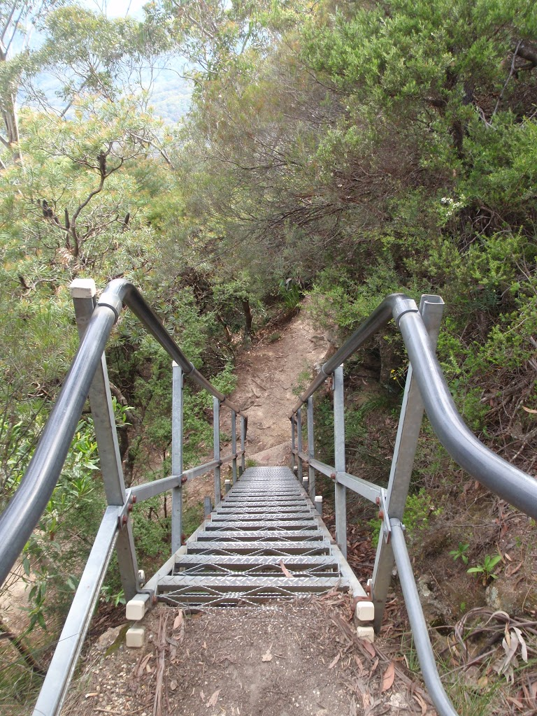 Staircase on Gordon Falls Lookout track (93724)