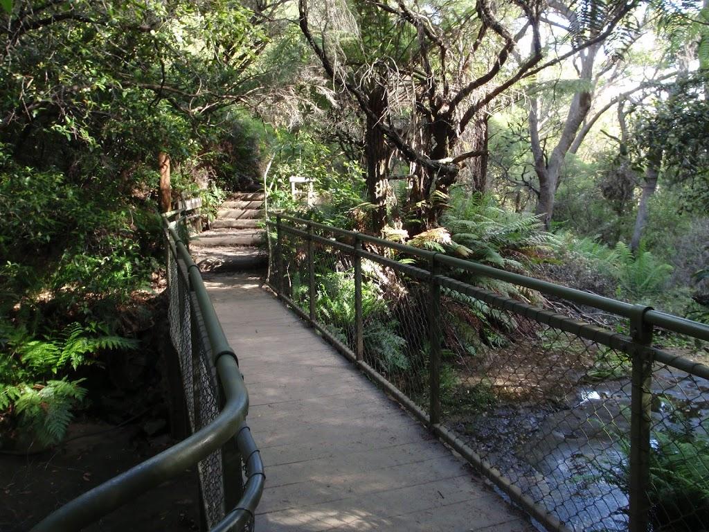 Crossing the Leura Cascades creek