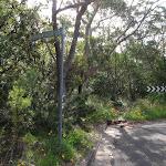 Tarpeian Rock signpost of Cliff drive (93838)