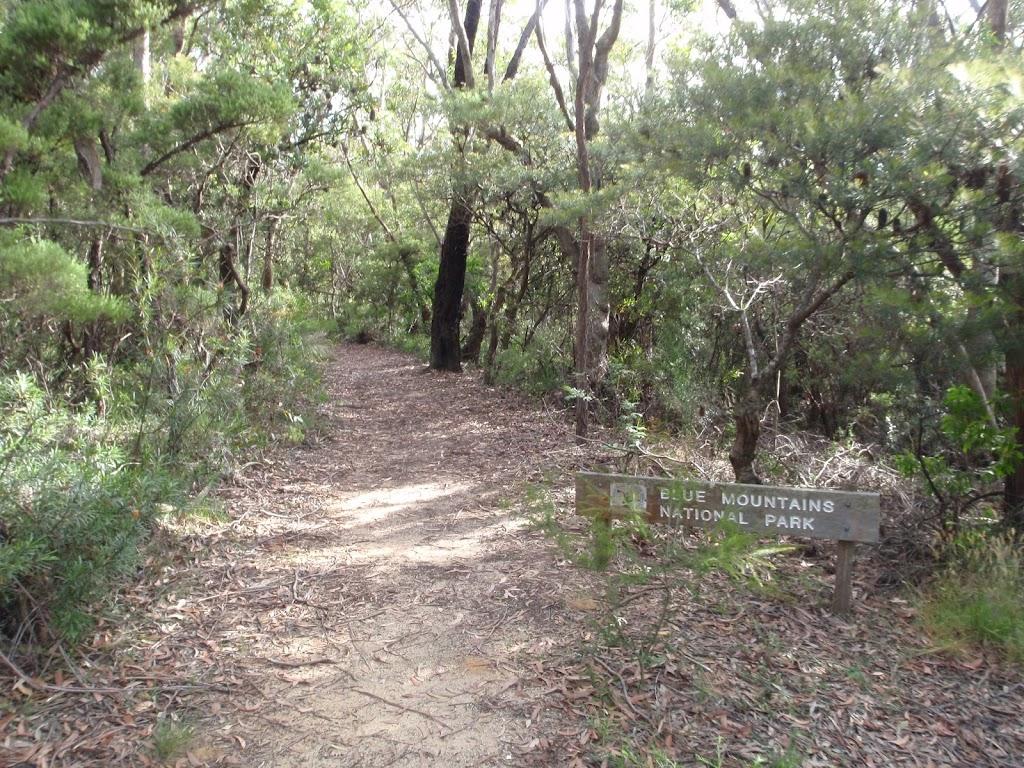 Tarpeian Rock track near cliff drive