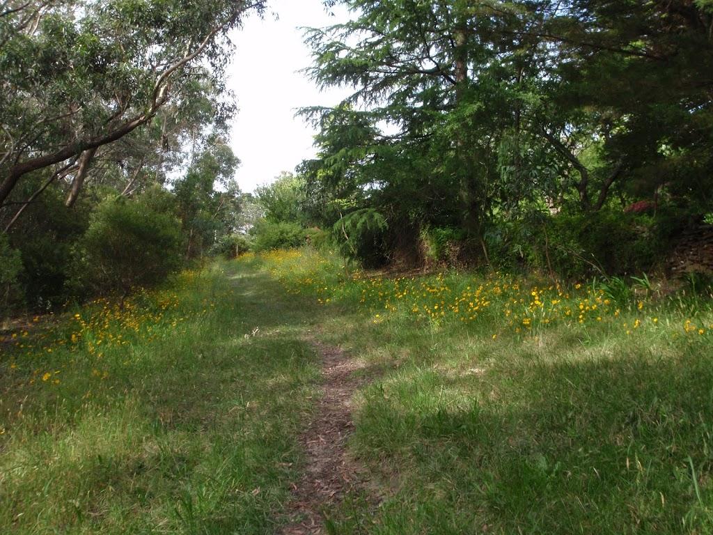 Track near Cliff Drive