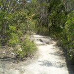 Track to Copelands Lookout