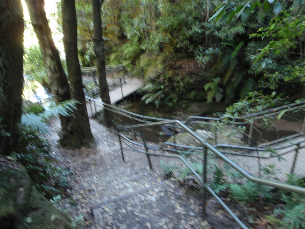 Leura Cascades Walkway