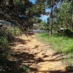 Elysian Rock track (95410)