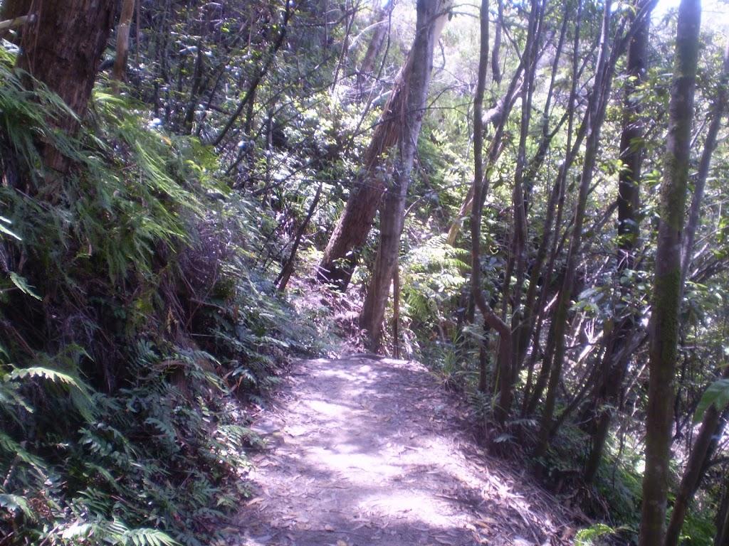 Round Walk track