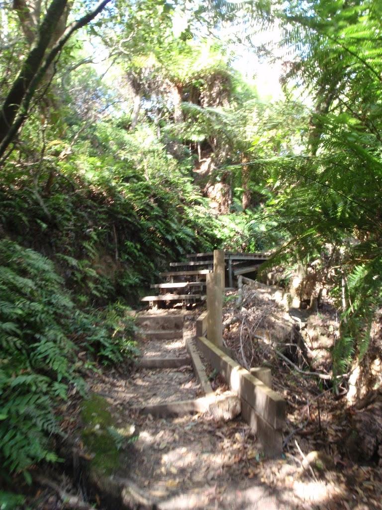 Climbing up to the Gordon Falls park