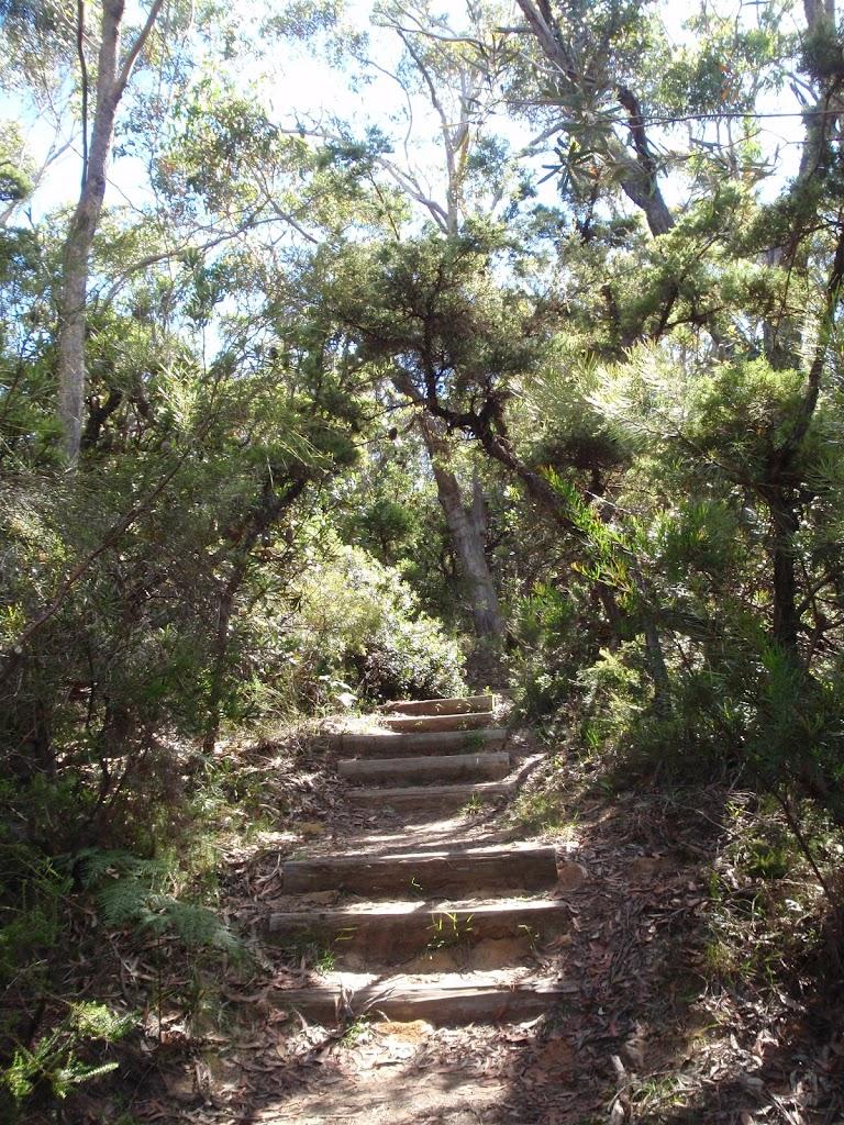 Near Gorden Falls Reserve