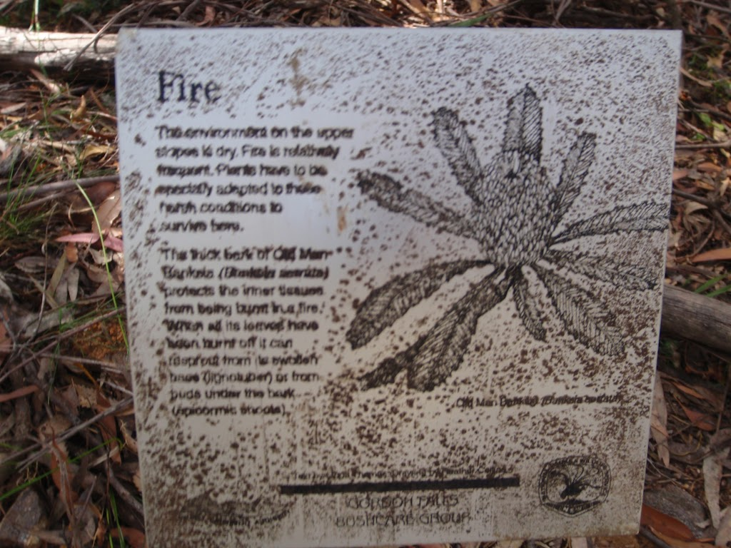 Information sign about fires in the area (95560)