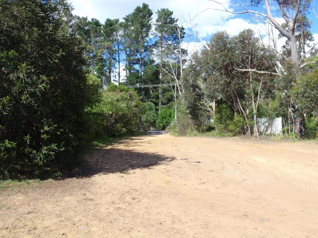 Olympian Lookout track near Olympian prd (95566)