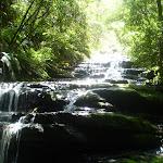 Leura Falls (9611)