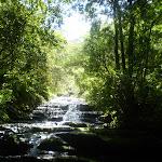 Leura Creek (9617)