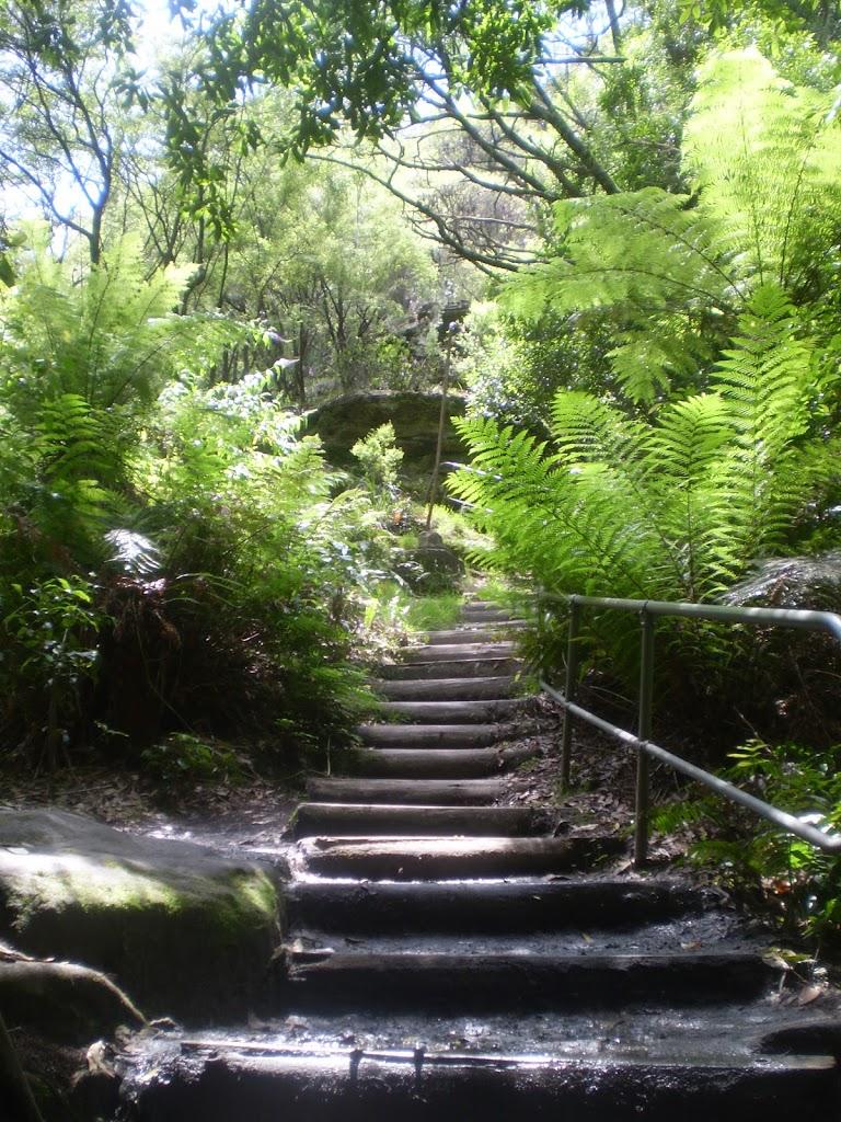Stairs on Round Walk track