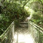 The bridge across the creek (9653)