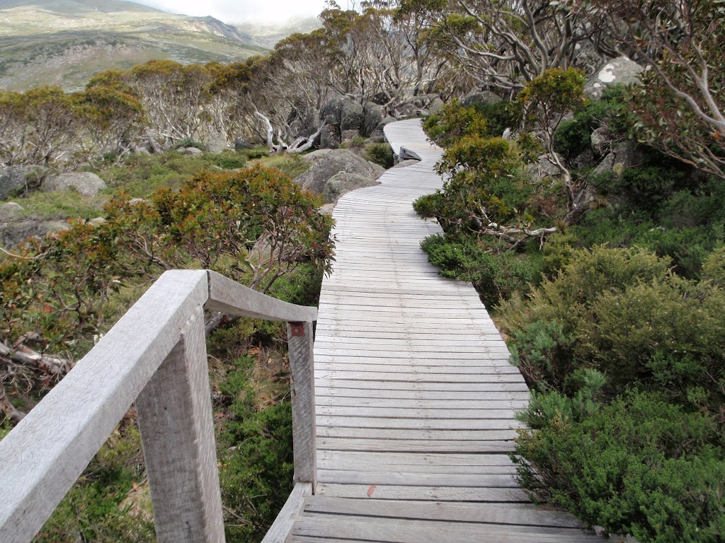 Board walk from Charlotte Pass Lookout