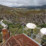 Looking along the board walk from near Main Range Lookout