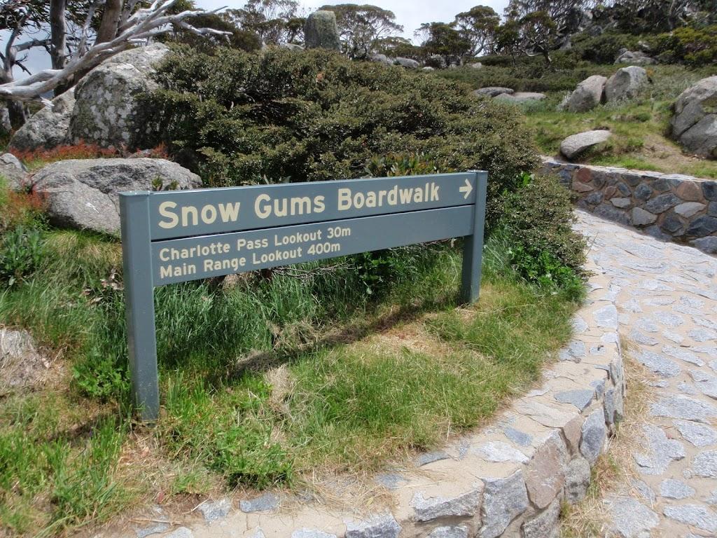 Start of Snow Gums Boardwalk
