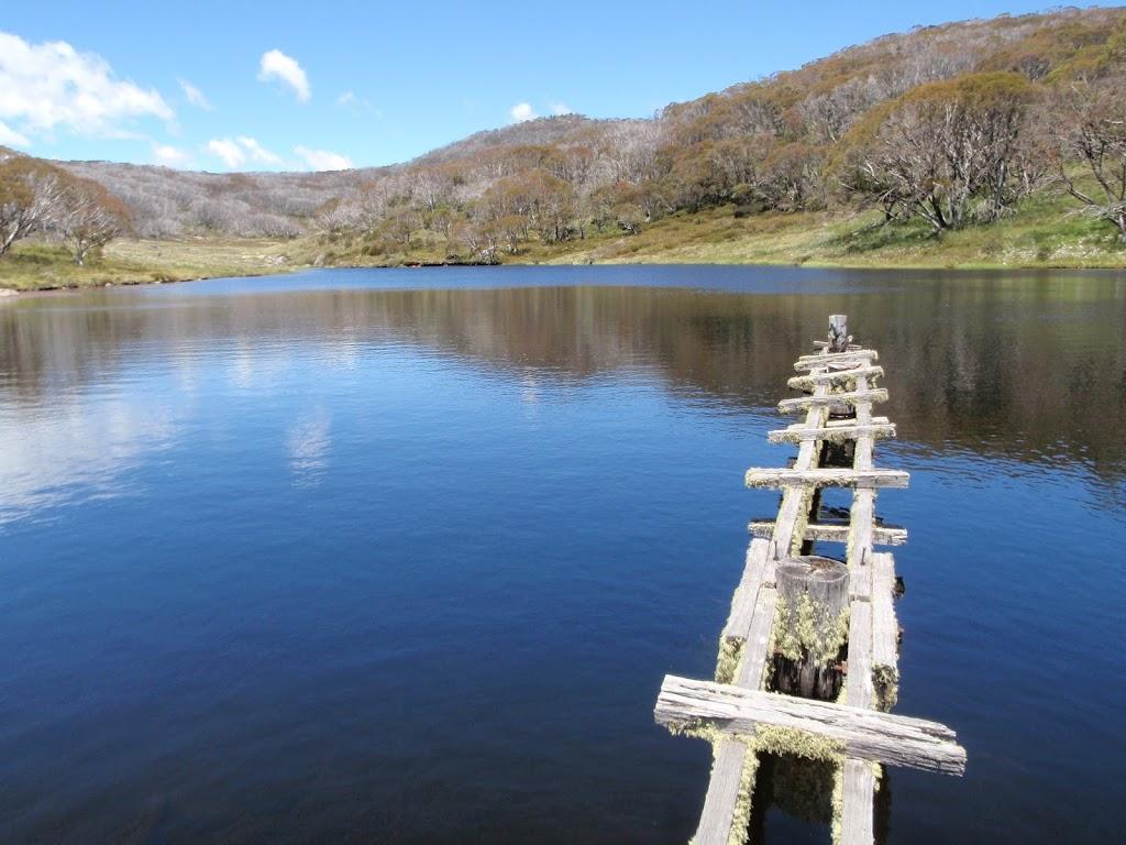 Timber platform on Rainbow Lake