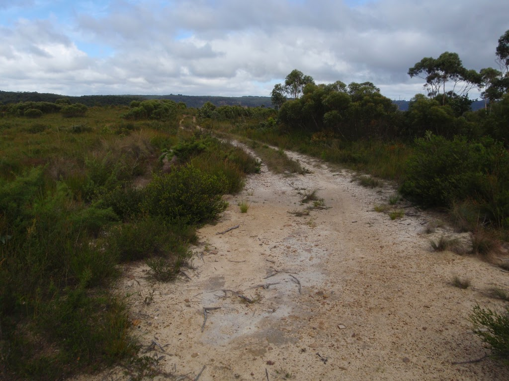 Govetts Ck Lookout Trail
