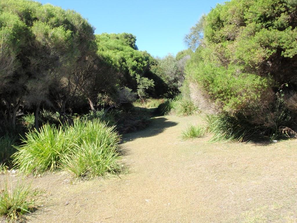 Track above Shelley Beach