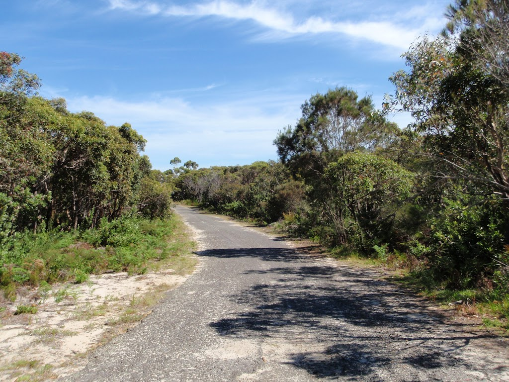 Beachcomber Rd Service Trails (99041)