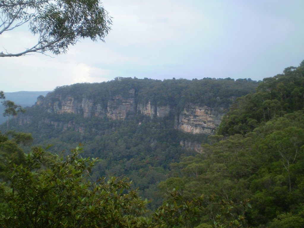 The cliffs of Leura and Katoomba (9950)