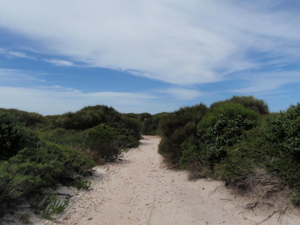 Coast Track (99701)