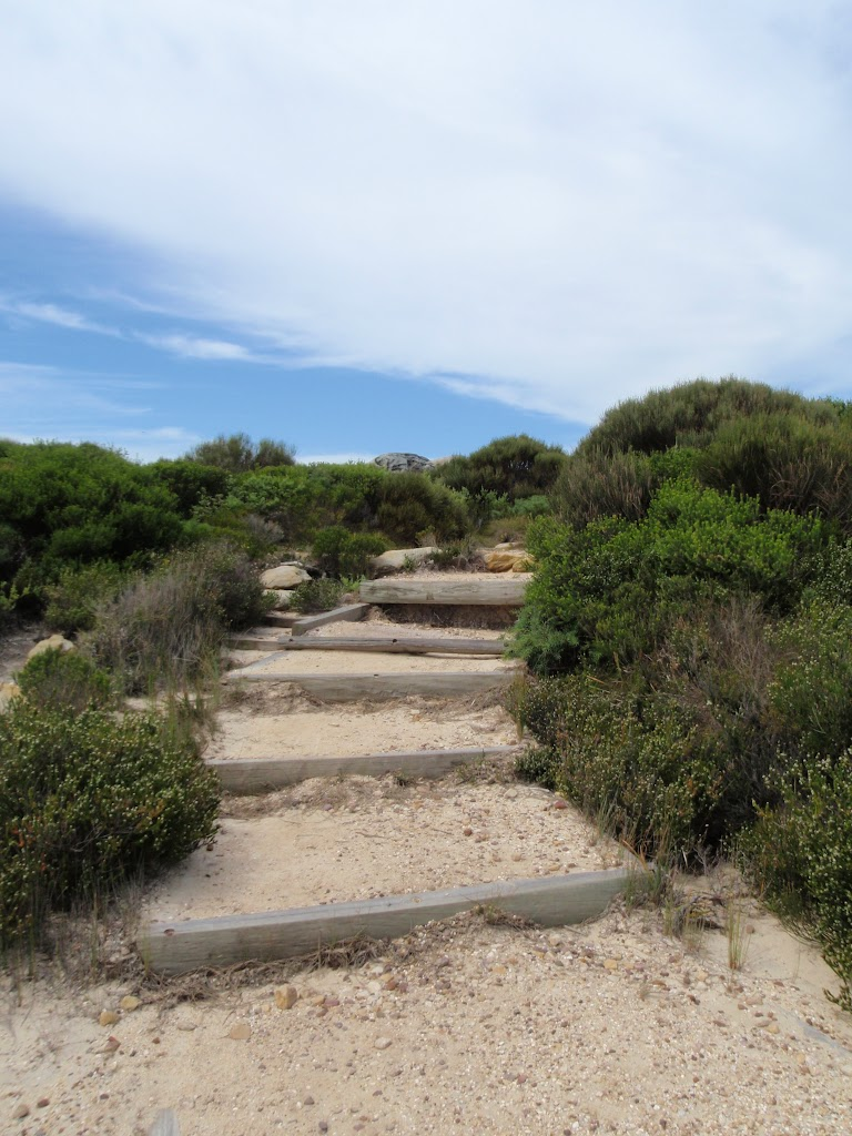 Stairs on the Coast Track