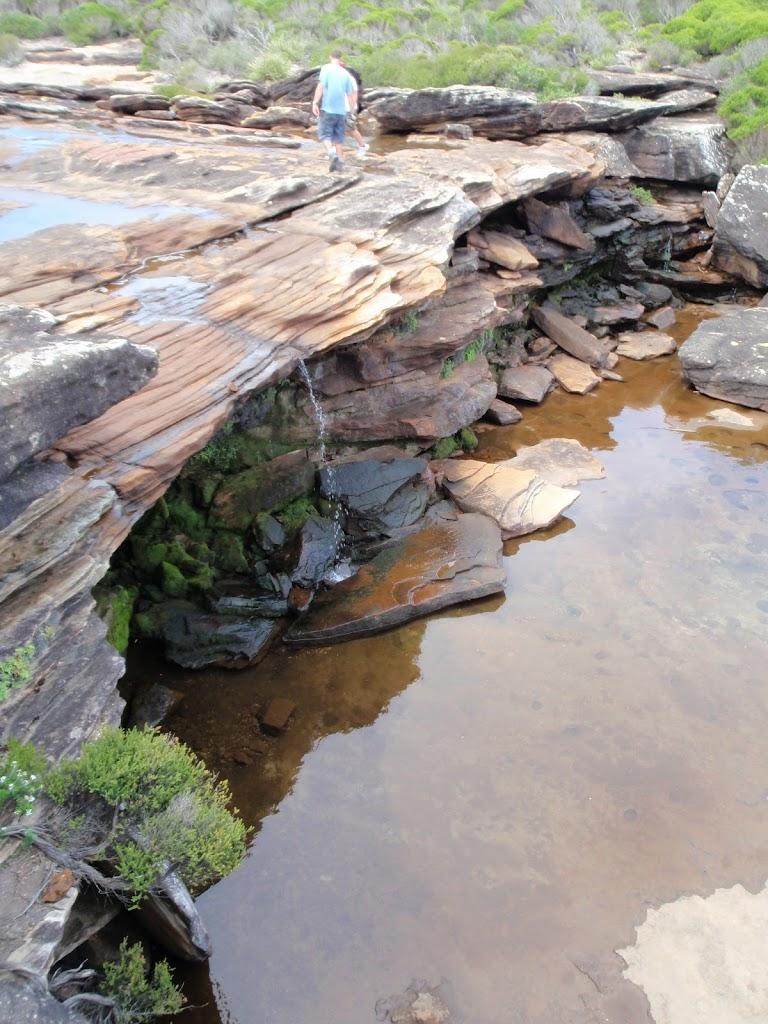 Creek at Curracarrang Cove