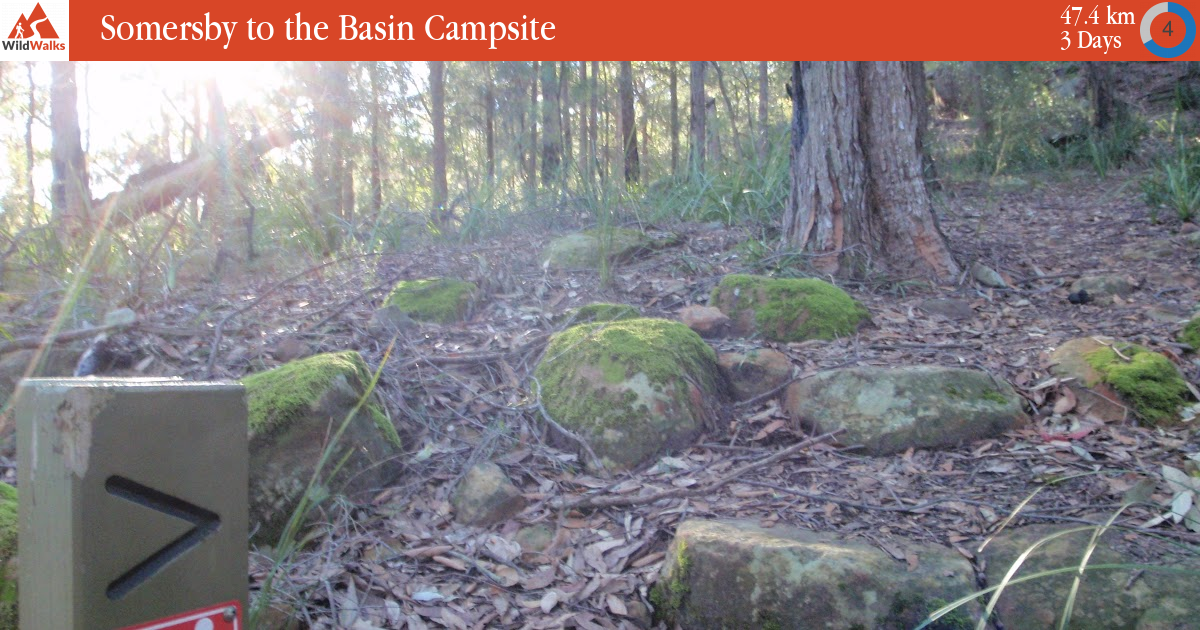 Somersby to the Basin Campsite walking track