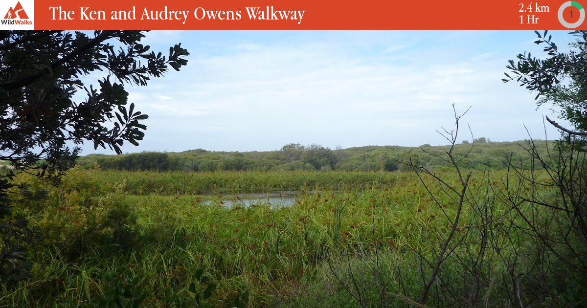 Sunday Afternoon Walk In Owen Park >> The Ken And Audrey Owens Walkway Walking Track