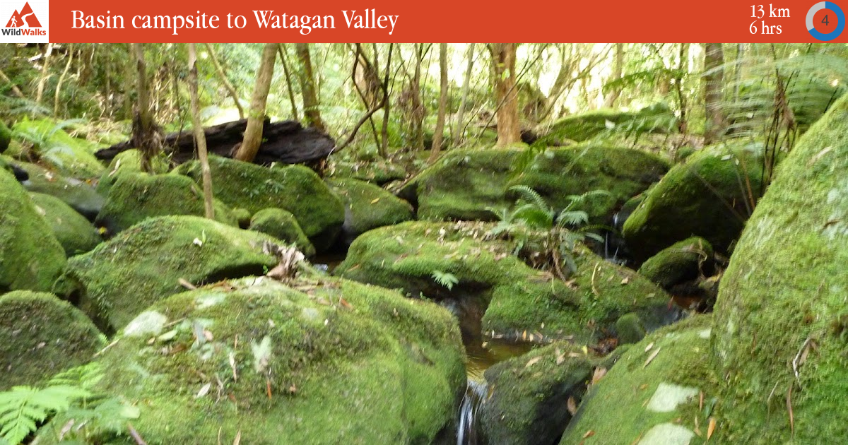 Basin campsite to Watagan Valley walking track