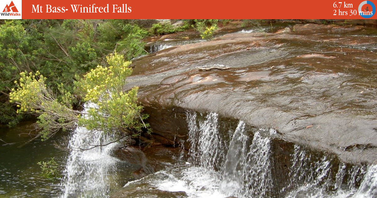 Mt bass winifred falls walking track - Swimming pools in great falls montana ...